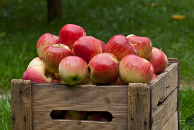 Orchard-to-Table, Lots of Ways!