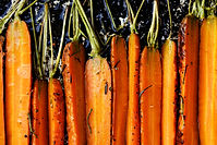 Roasted Carrots with Vermont Maple Flakes from MorningStar Kitchen