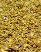 Lemon Grove Citrus Seasoning from MorningStar Kitchen