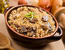 Mushrom Risotto Recipe by MorningStar Kitchen