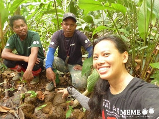 9 Oct 2016 - Environmentalist leads Msia's Asian elephants towards brighter future