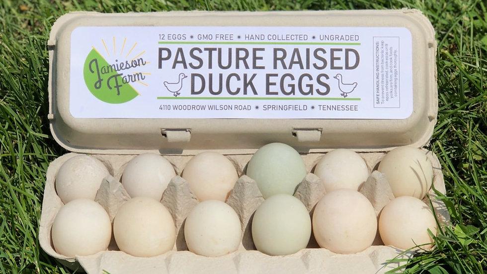 Pasture Raised Duck Eggs