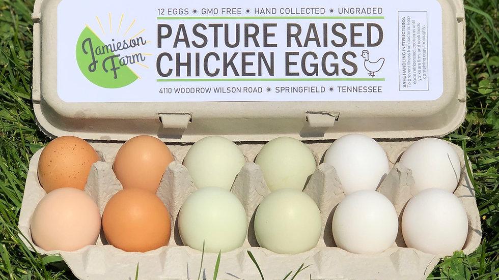 Pasture Raised Chicken Eggs🥚