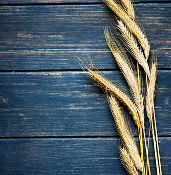 Food As Medicine: Treating Fall Dryness from the Inside Out