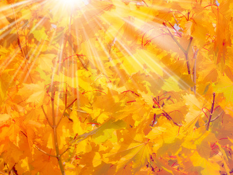 Spirit of the Season: Autumn, Grief and The Po