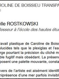 Caroline_de_boissieu_-_Transparences_et_
