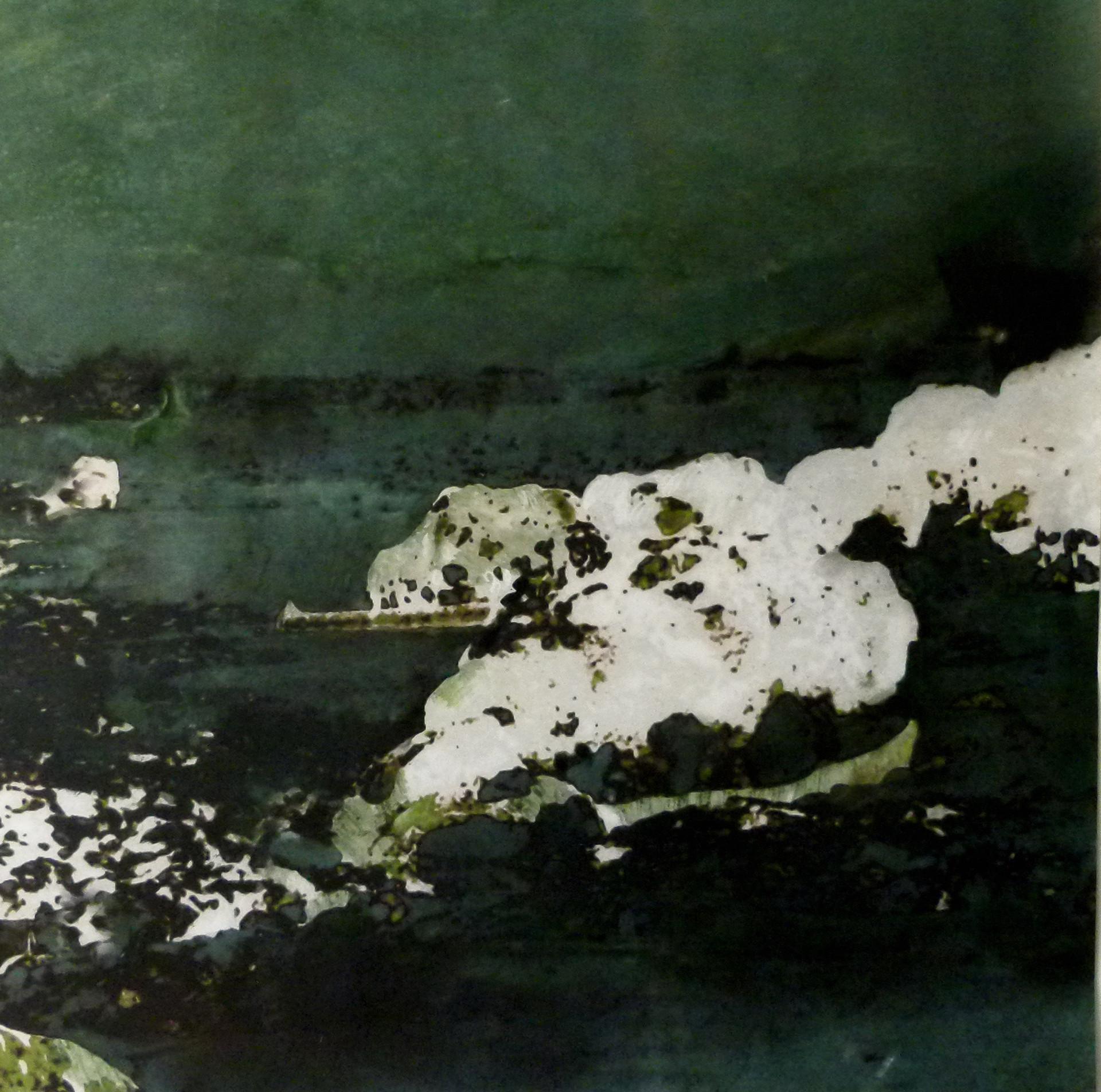 CAROLINE DE BOISSIEU - SANS TITRE - 2013