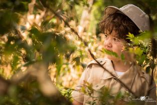 Arthur no Vale dos Dinossauros