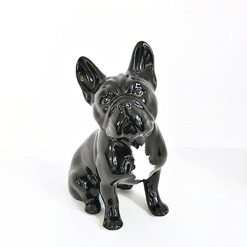Französische Bulldogge schwarz mit Fleck