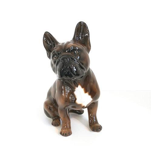 Französische Bulldogge getigert