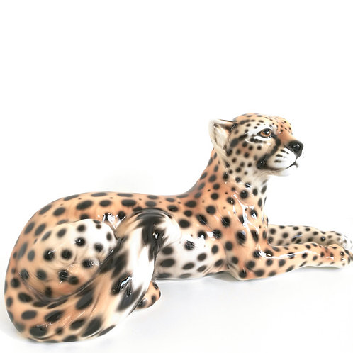 Gepard liegend