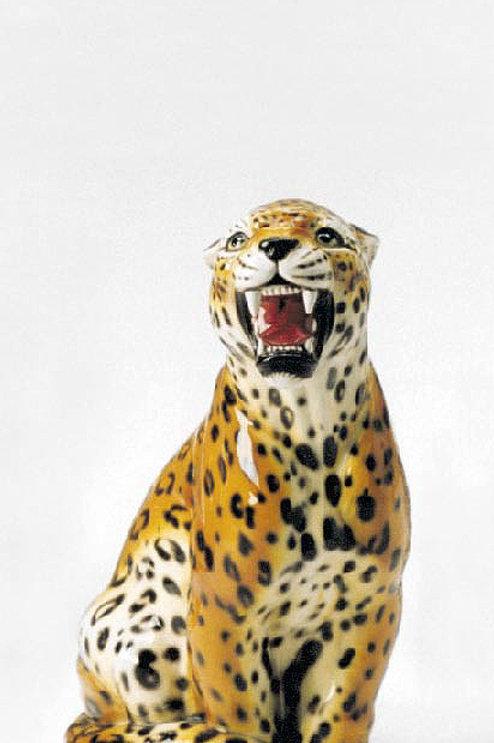 """Leopard """"M"""""""
