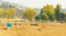 home agility pic.JPG