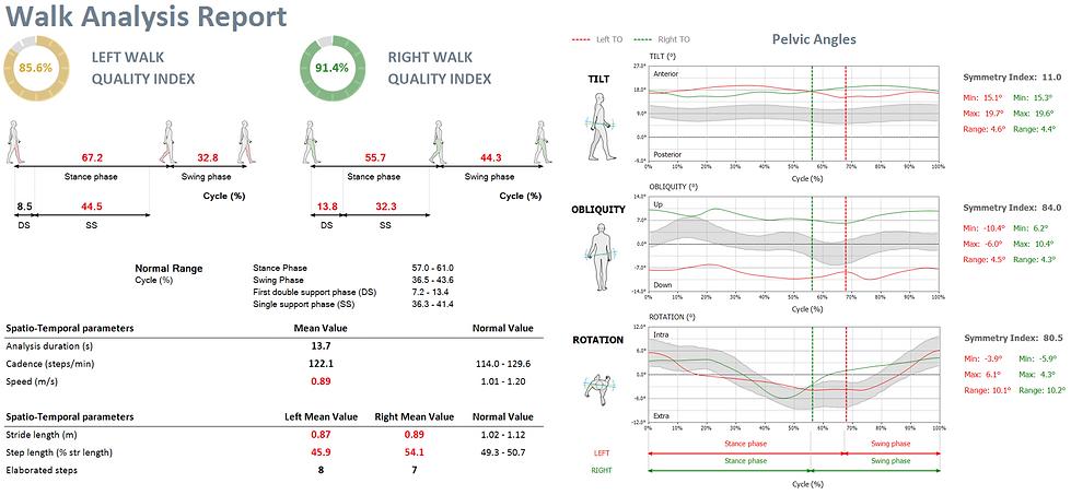 G-WALK Report.PNG