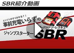 sbr_movie2.jpg