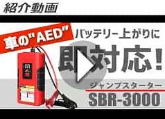 sbr-3000_movie02.jpg