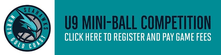 U9 Miniball Register Here.png