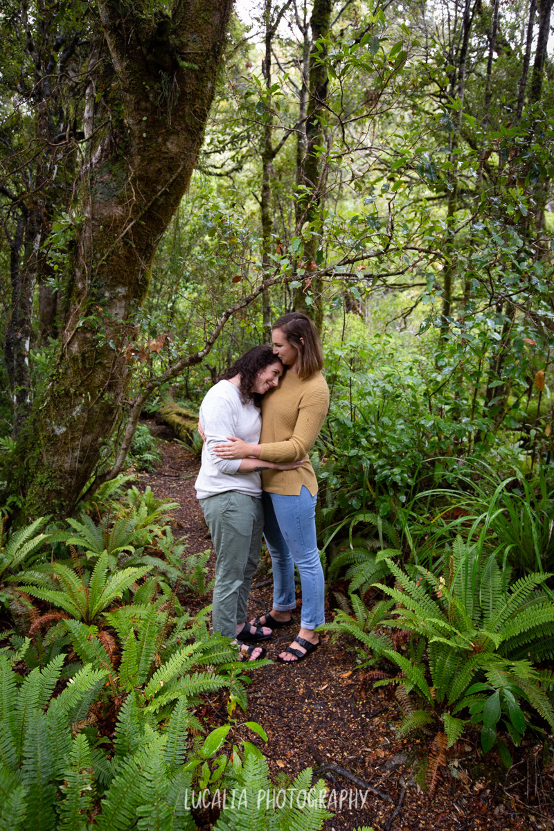 engagement portrait of a couple standing amongst ferns at Mt Holdsworth Wairarapa
