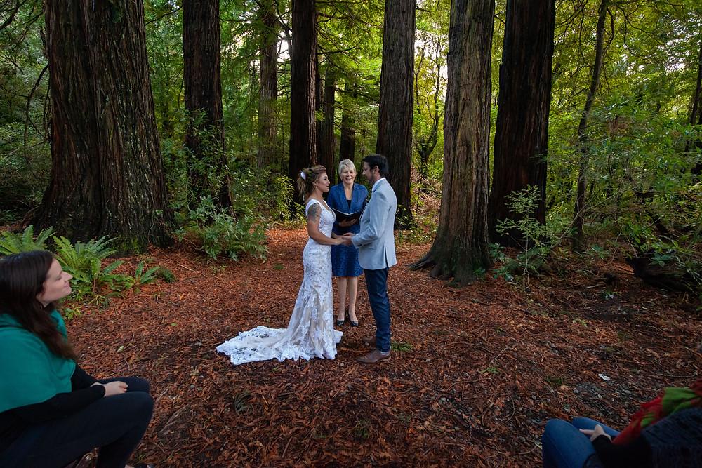 Wendy Morrison Wairarapa marriage celebrant at Pukaha National Wildlife Centre, Wairarapa wedding photographer