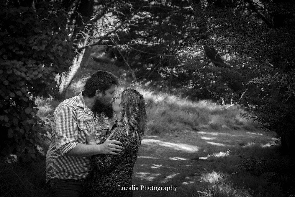engaged couple kissing in a pine forest, Castlepoint Wairarapa
