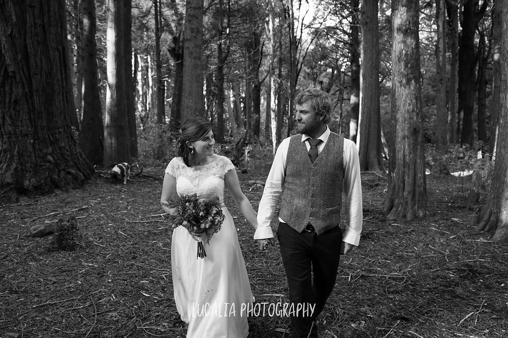 married couple walking in Kiriwhakapapa forest, Wairarapa wedding photographer