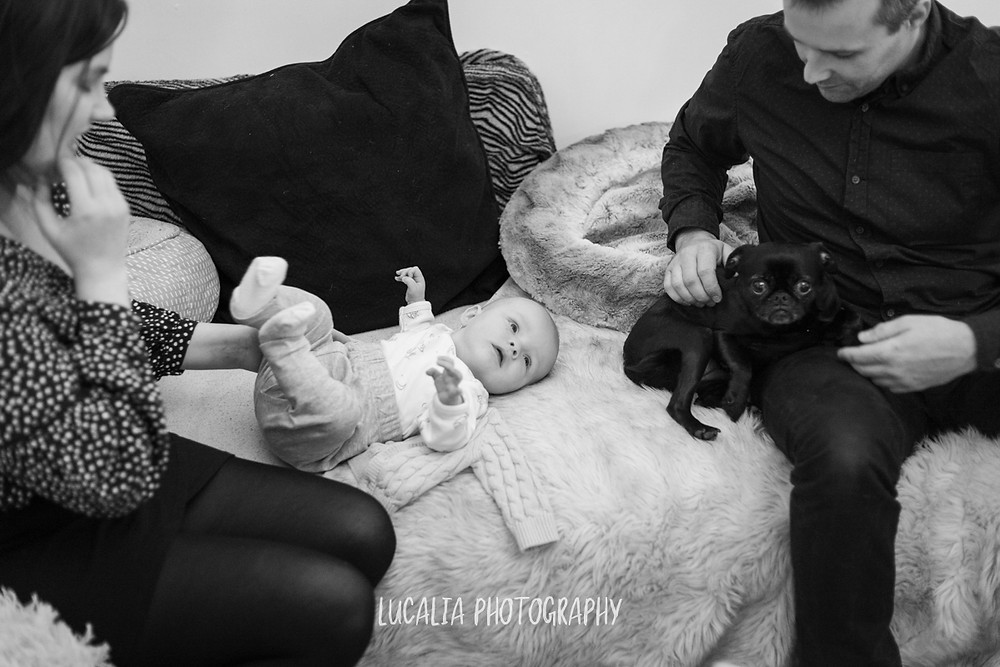 baby lying on couch with mum, dad and dog, Mount Holdsworth, Wairarapa family photographer