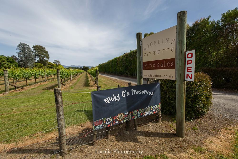Le Gra vineyard front gate, Wairarapa family photographer