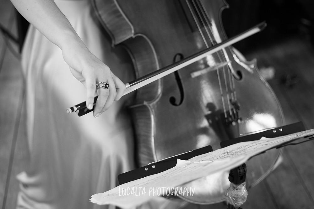 cello detail, Castlepoint Wairarapa wedding, Lucalia Photography