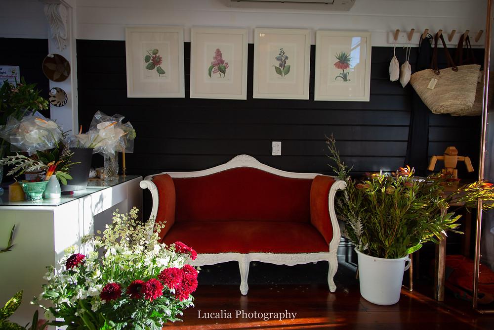red velvet vintage seat in a flower shop, Wairarapa