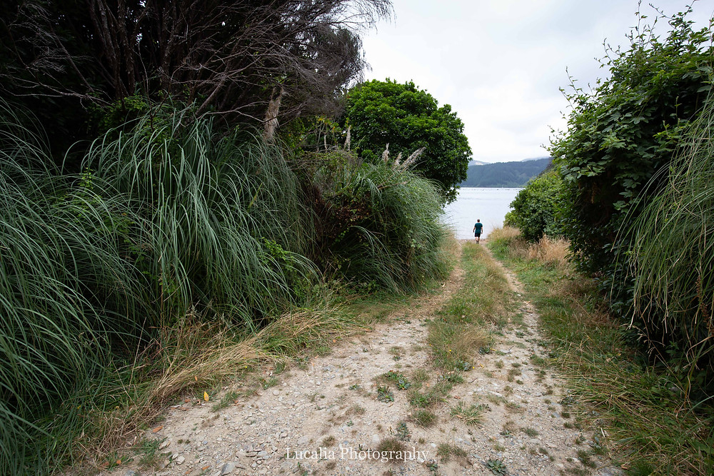 walking to the end of the road, Wairarapa photographer