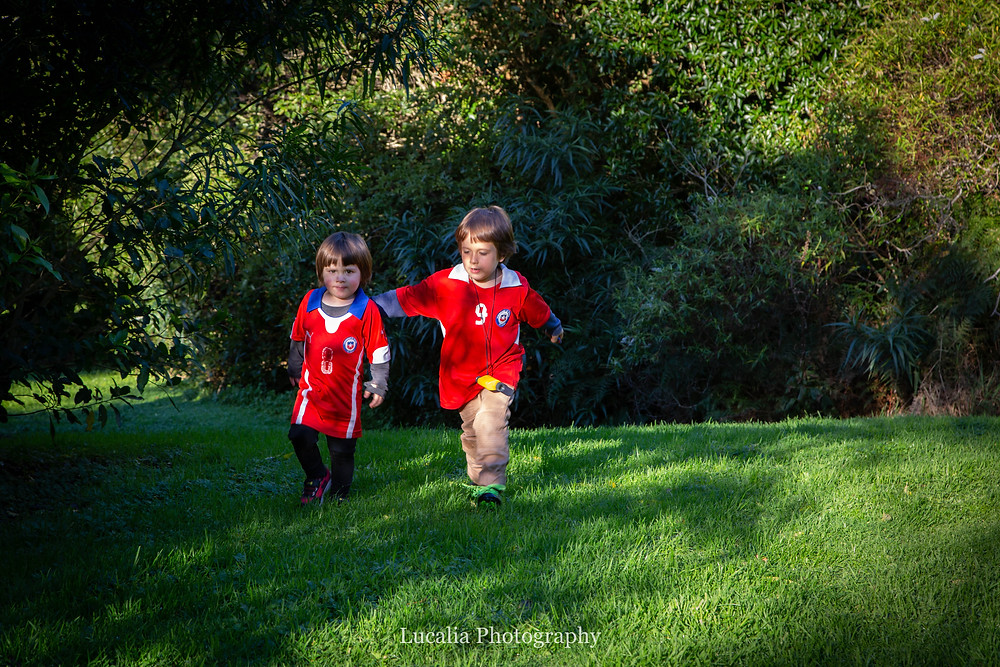 two boys walking under shady trees, Wairarapa family photographer