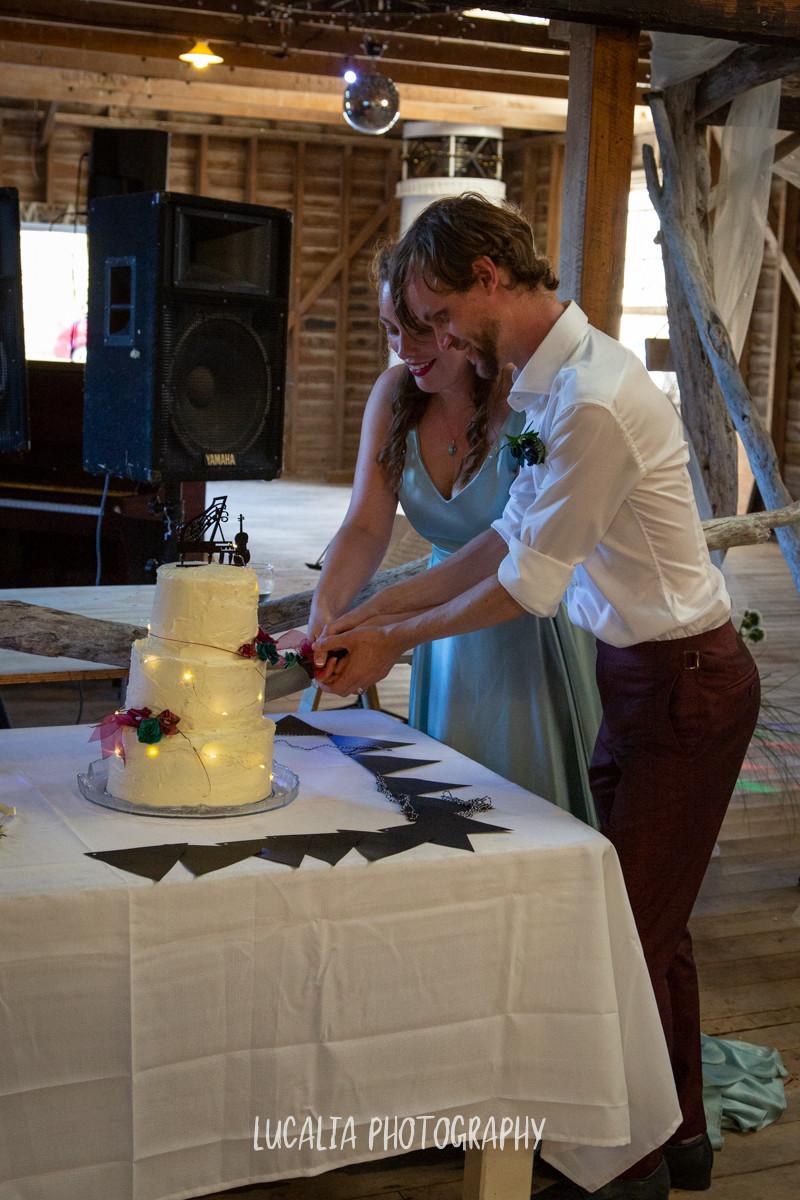 cutting the vegan wedding cake, Castlepoint Wairarapa wedding, Lucalia Photography