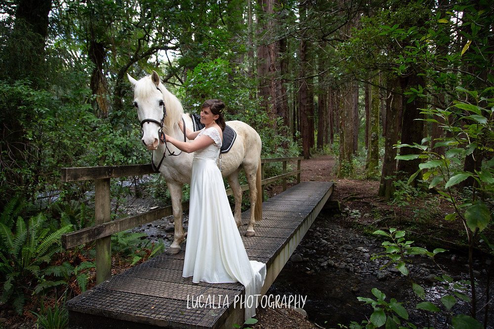 bride walking with her white horse over a bridge over a river in Redwood forest, Kiriwhakapapa Wairarapa wedding photographer