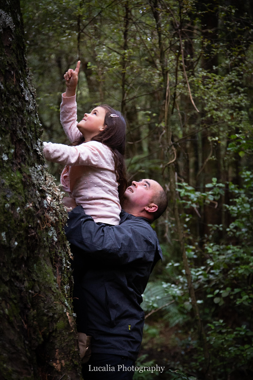 father holding his daughter up to a tree trunk, she is pointing upwards, Wairarapa family photographer
