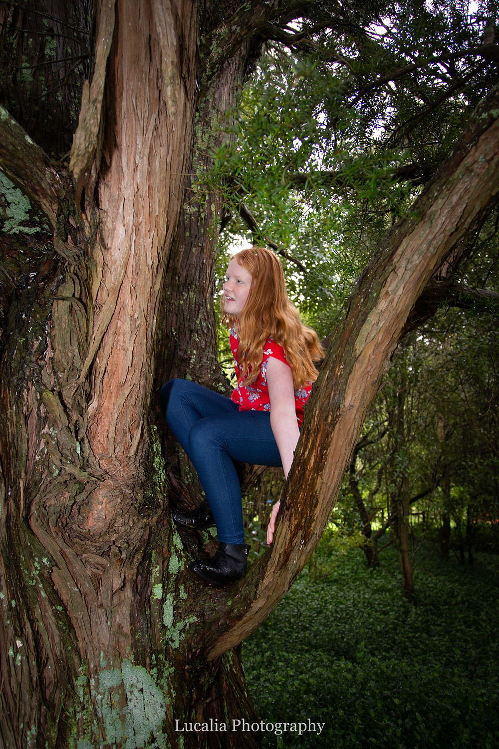 red haired girl climbing a tree