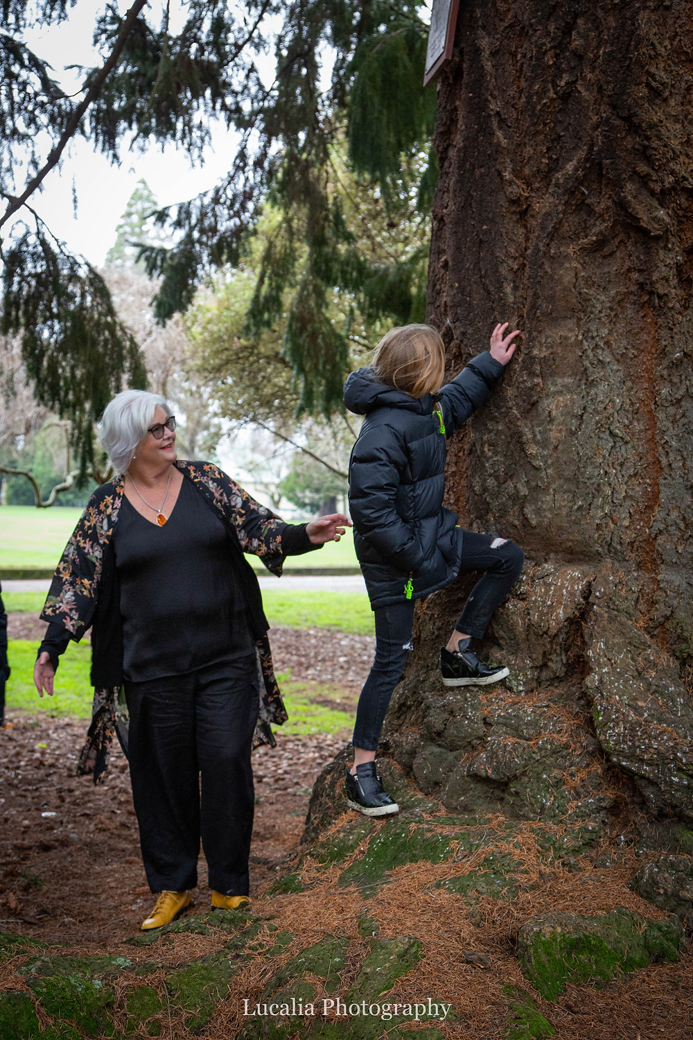 grandmother watching her granddaughter climb a tree in Queen Elizabeth Park, Wairarapa family photographer