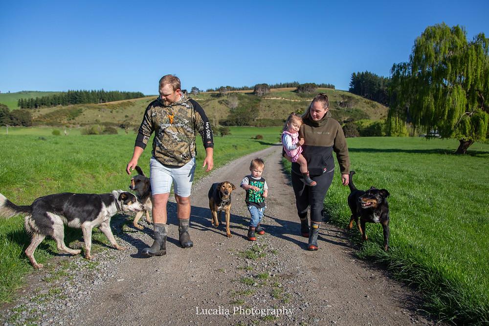family walking with dogs on a farm, Wairarapa family photographer
