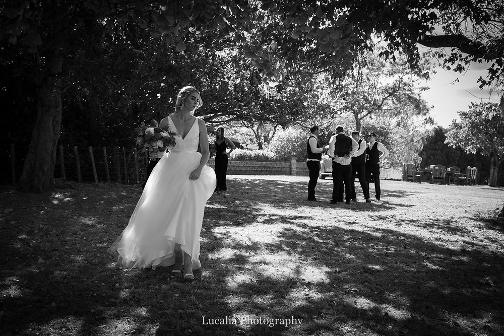 bride walking amongst trees with guys in the background, Wairarapa