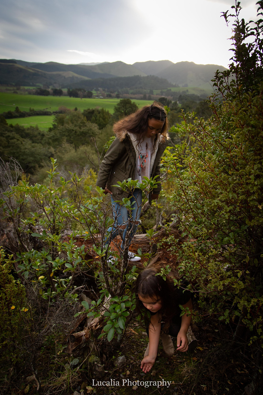 two girls crawl under some bushes, Wairarapa family photographer