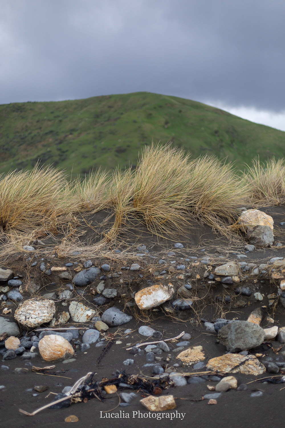 volcanic sand, rocks, tussock grass and hill White Rock, Wairarapra