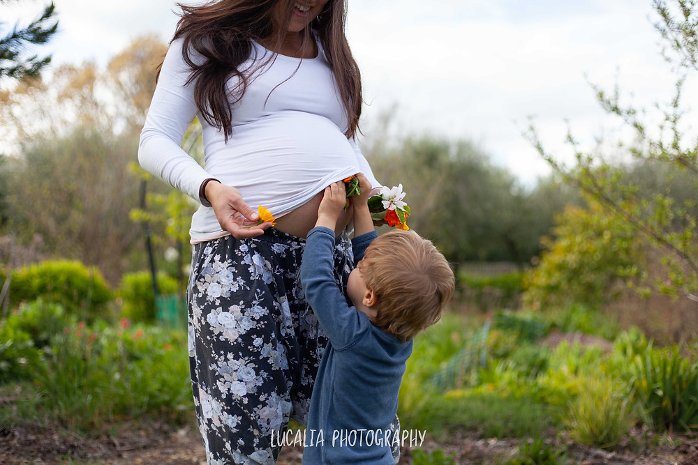Son gives pregnant belly flowers, Wairarapa maternity photographer