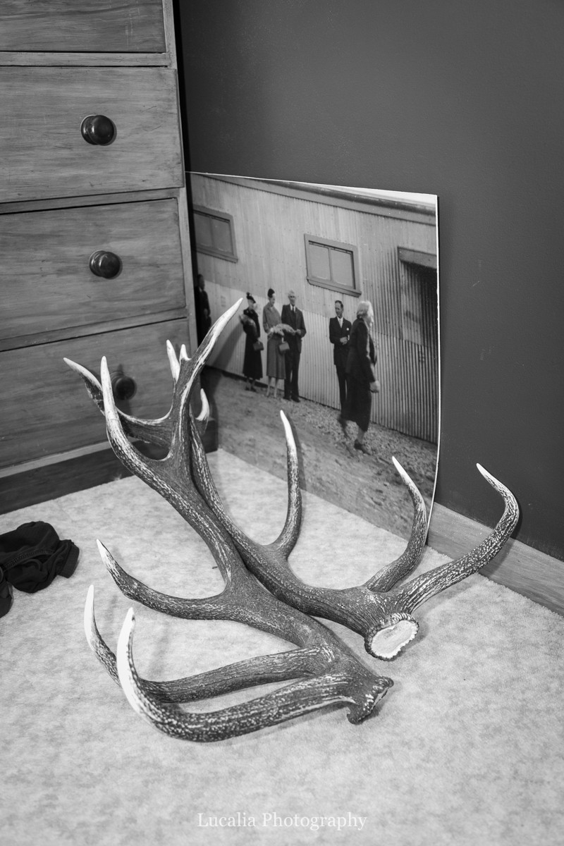 family photo with antlers, Wairarapa wedding photographers
