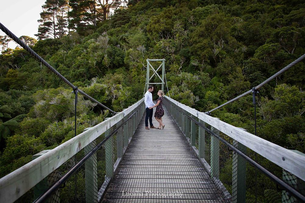 enaged couple holding hands in the middle of a suspension bridge, Zealandia, Wellington