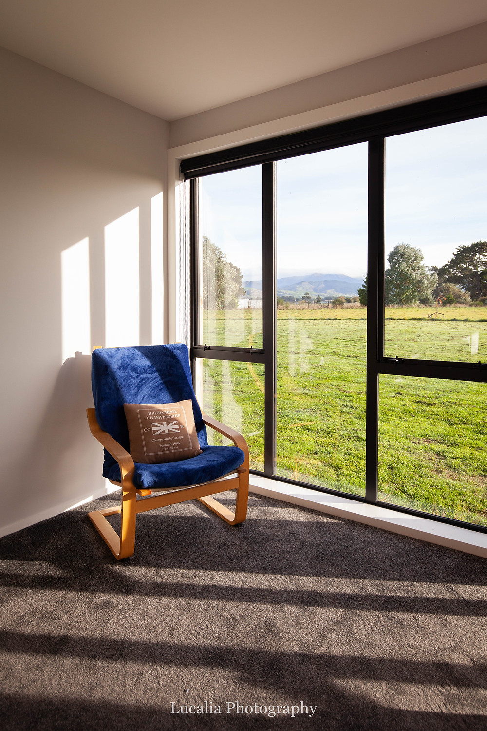sunlight through windows onto blue chair, container home Wairarapa