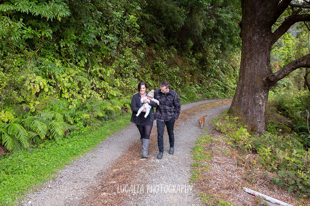 family walking down forest road, Mount Holdsworth, Wairarapa family photographer