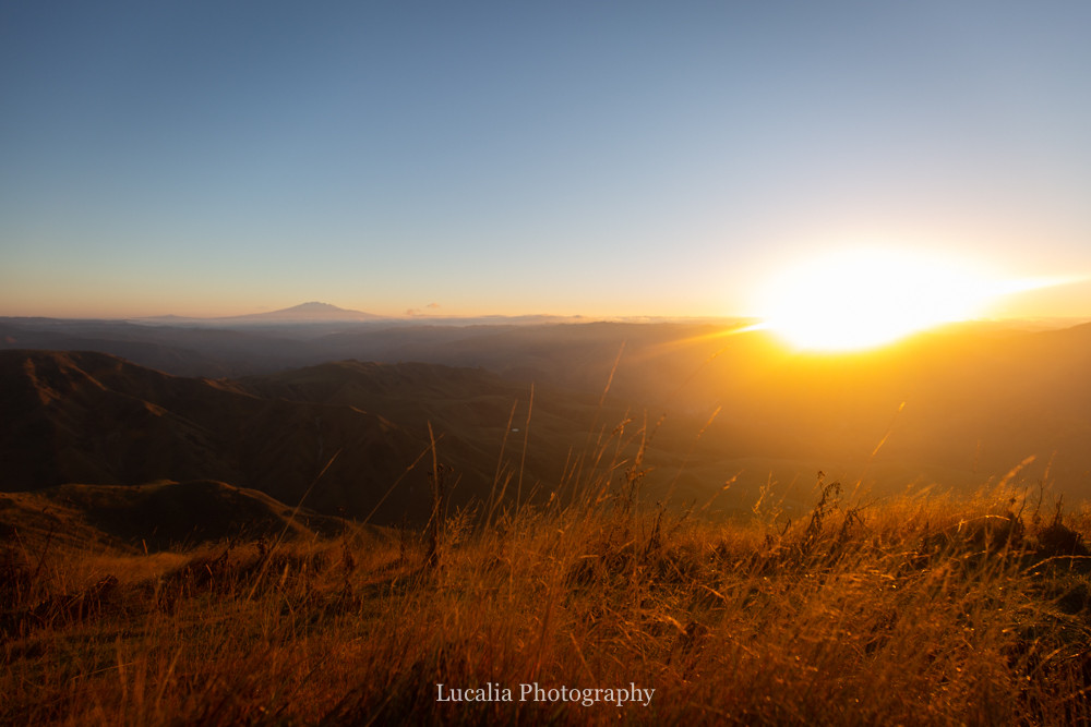 the sun has risen near mount ruapehu from High Peaks Farm Stay, Mangamahu, Manawatu-Wanganui, New Zealand