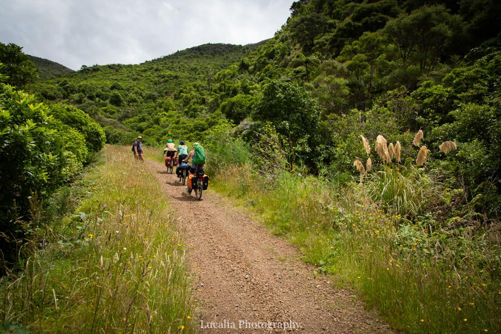 Cyclists riding up the Remutaka Incline, Wairarapa walk