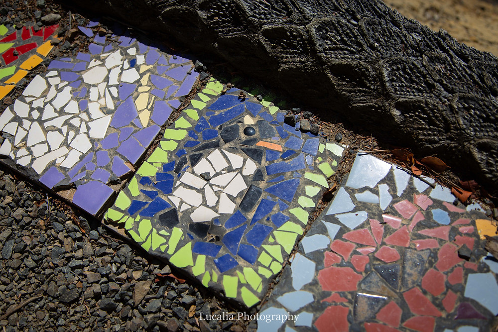 native bird mosaic tiles, Wairarapa photographer