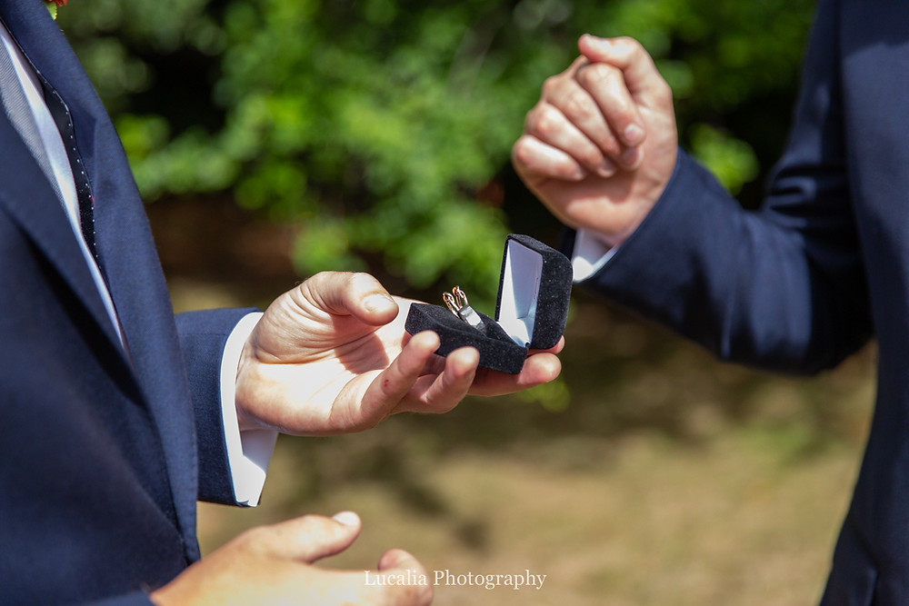 guys holding wedding rings in box, Wairarapa wedding photographers