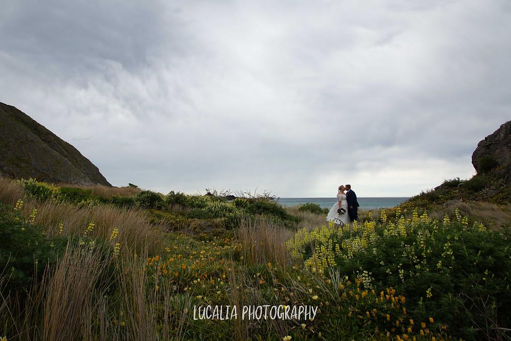 bride and groom kissing amongst yellow lupins flowers, Ngawi, Wairarapa wedding photographer